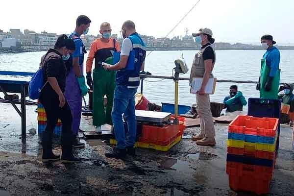 migraciones venezolanos Chimbote Pescadores